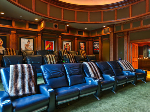 The home theatre Image credit: Brett Lawyer