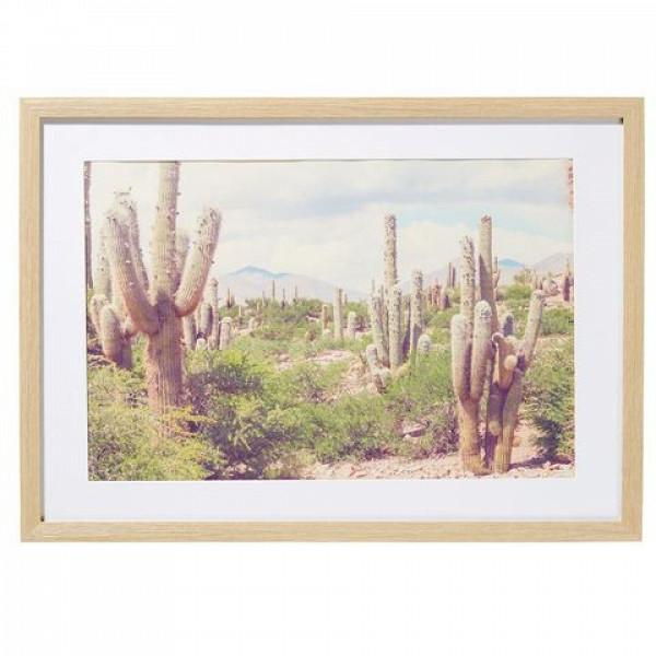 $14 Desert Print Frame