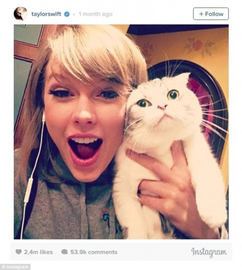 Number 6 - Taylor Swift and her cat Meredith