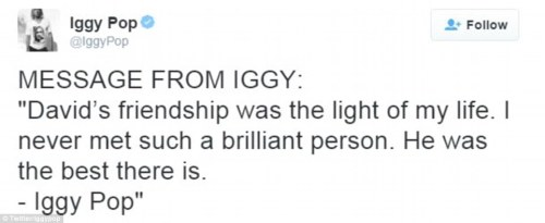 From Iggy Pop