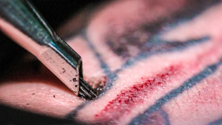 An up-close view of a tattoo being given. Ouch.