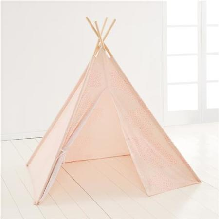 Hiding all they toys in this kid's play tent. $25.