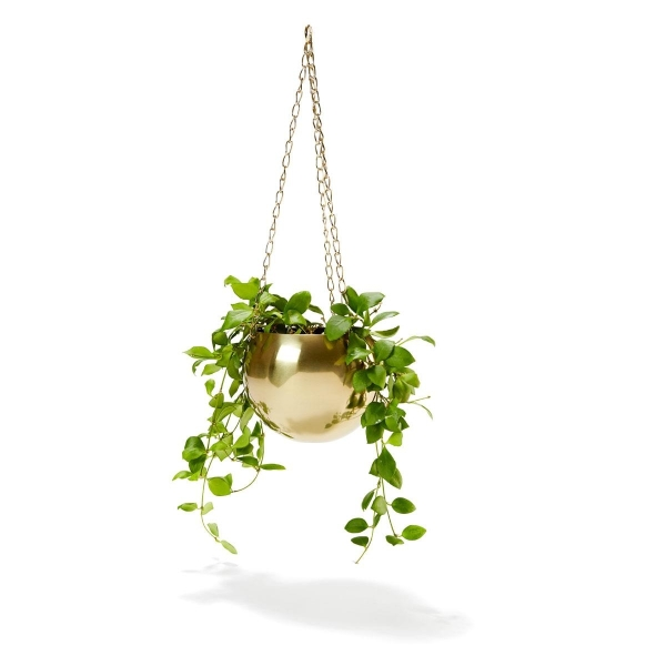 $6 Gold Plated Hanging Planter